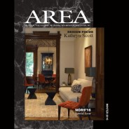Area Winter 2016