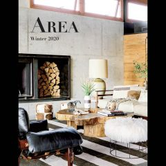 AREA Winter 2020